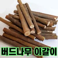 국내산 야생 버드나무 가지 50g (소동물 이갈이용)