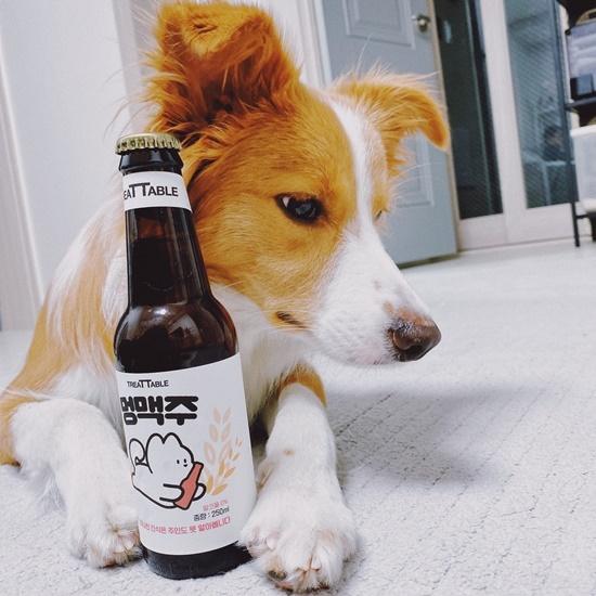멍맥주 220ml 강아지 전용 무알콜 맥주 음료