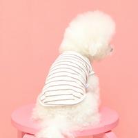 피타 강아지 자수 axx 멜란지 스트라이프 나시티셔츠 c2