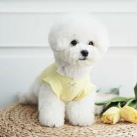 멜로디 프릴 티셔츠 옐로우
