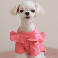 아덴 셔링 핑크