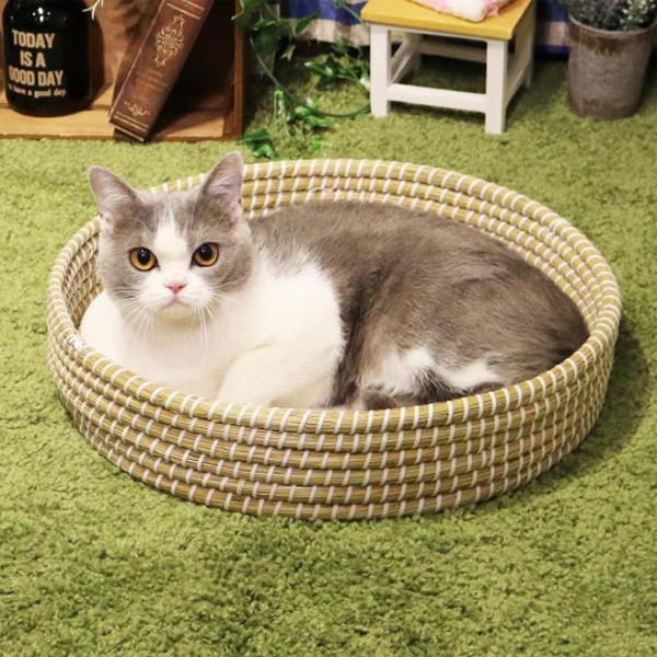 캐티맨 고양이 라탄 라운드 바구니