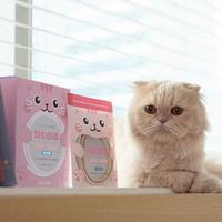 캣츠모리 고양이 덴탈껌 와이어츄 닭고기맛 1box