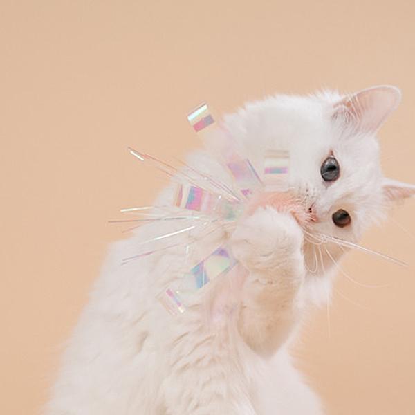 쥬아펫 오로라썬스틱 고양이가 좋아하는 장난감 (4 color)