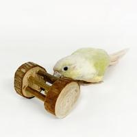 61654 트릭시 나무 롤링 장난감