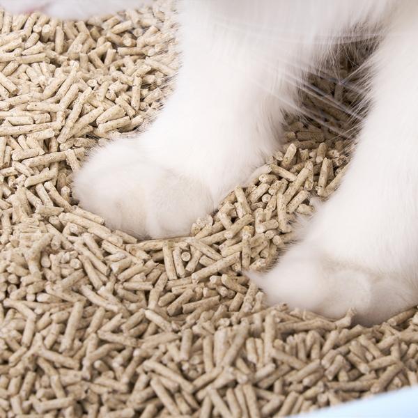 (5개묶음) 터치캣 땅콩껍질 파우다 친환경 고양이모래 (2.5kg)