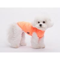 강아지 고양이 쿨링 티셔츠 네온오렌지