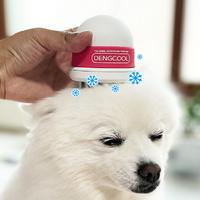 더위에 지친 강아지를 시원하게! 댕쿨 강아지 쿨링빗