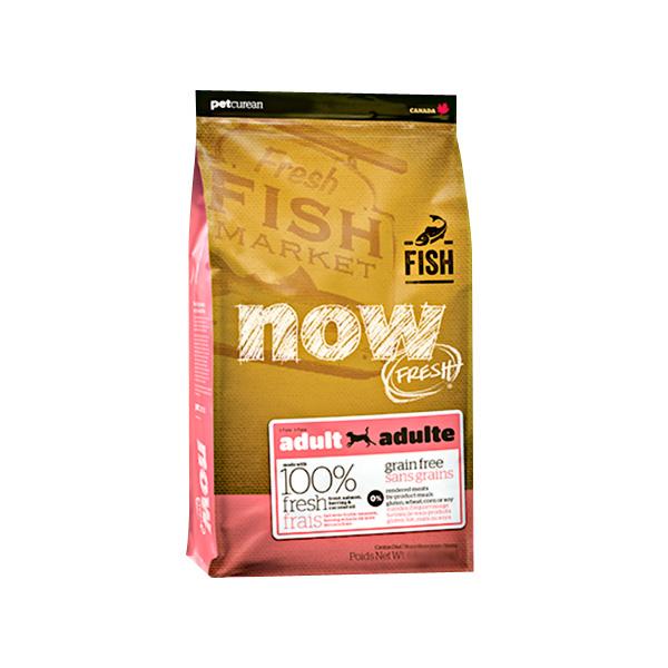 NOW 나우 피쉬 어덜트 2.72kg
