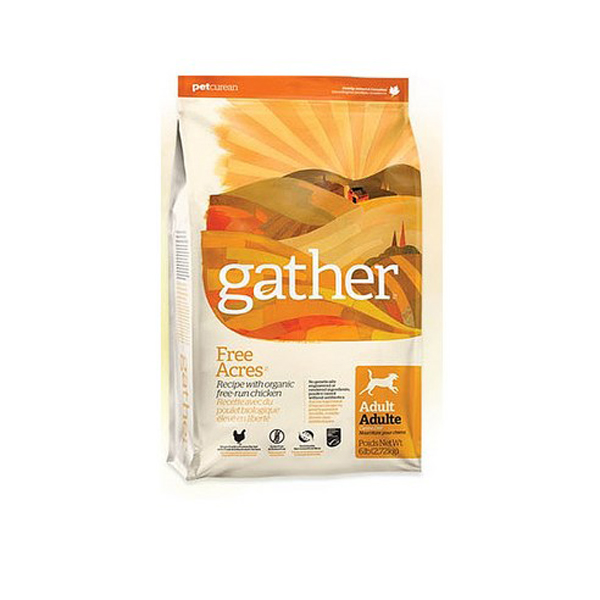 게더 프리에이커 치킨 애견사료 1kg