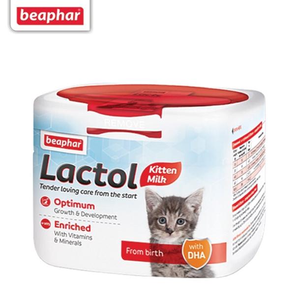 고양이분유 비아파 락톨 키티 500g