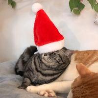 크리스마스 산타 모자