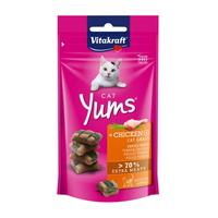 비타크래프트 고양이 간식 캣얌 치킨 캣그라스 48g