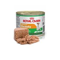 (유통기한21.03.29)로얄캐닌 어덜트 뷰티 캔 습식사료 195g