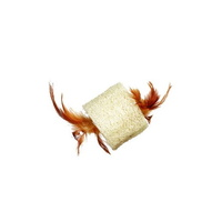 칼리 고양이 수세미 깃털 루파 장난감