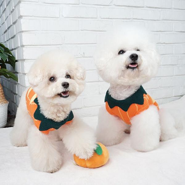 강아지할로윈 강아지코스튬 강아지니트 호박스웨터