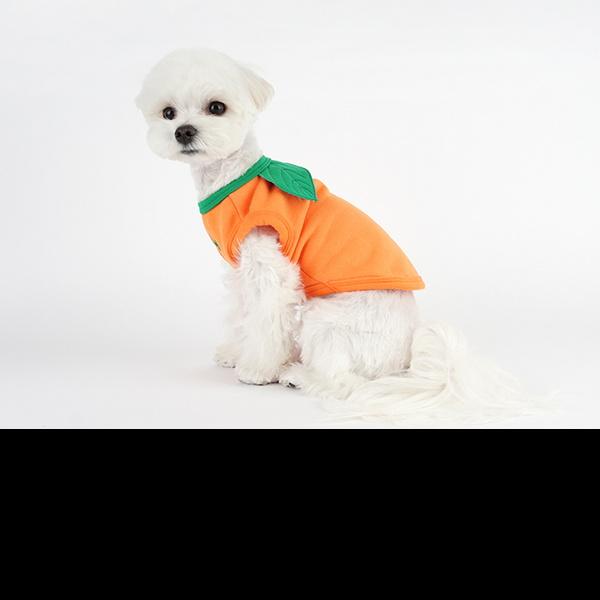 강아지기모티 고양이코스튬 오렌지 나시