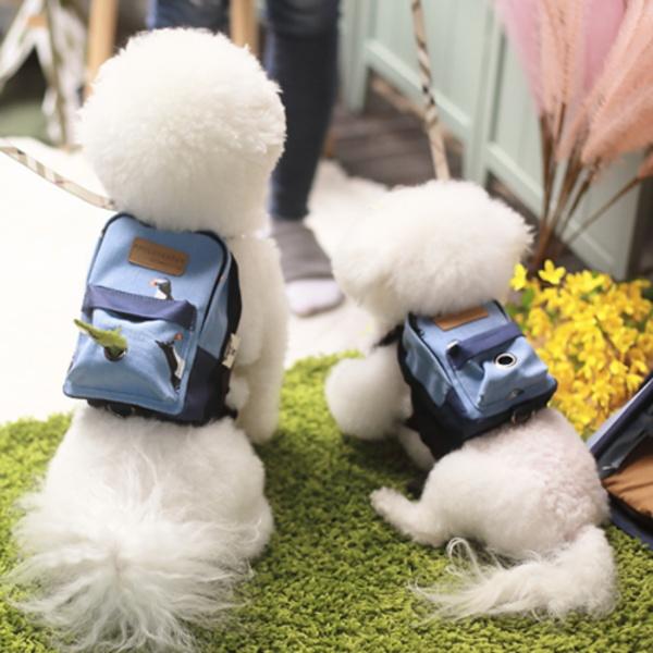 강아지백팩 미니미백팩