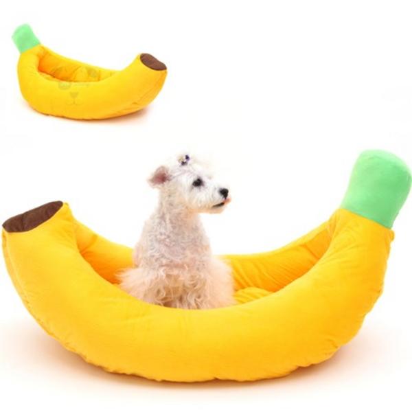 펫데일리 바나나 하우스