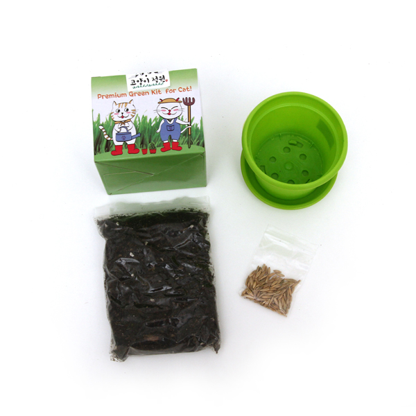 고양이정원 캣그라스 재배세트 (화분)