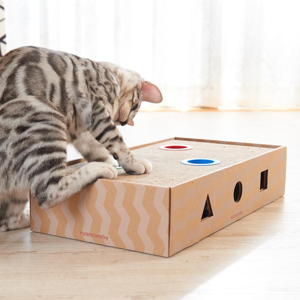 가리가리 고양이 스크래쳐 플레이 박스