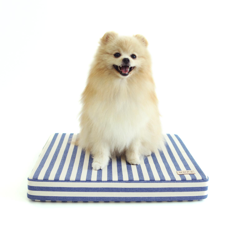 헙스 반려동물 쿨매트 블루