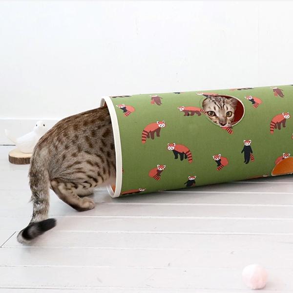 모모제리 고양이 터널 래서판다