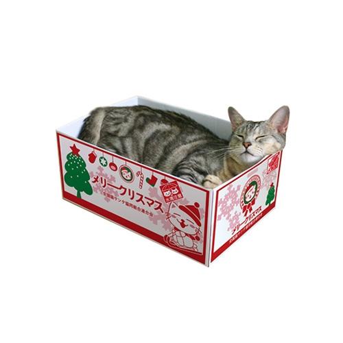 데코퐁 박스 스크래쳐 크리스마스