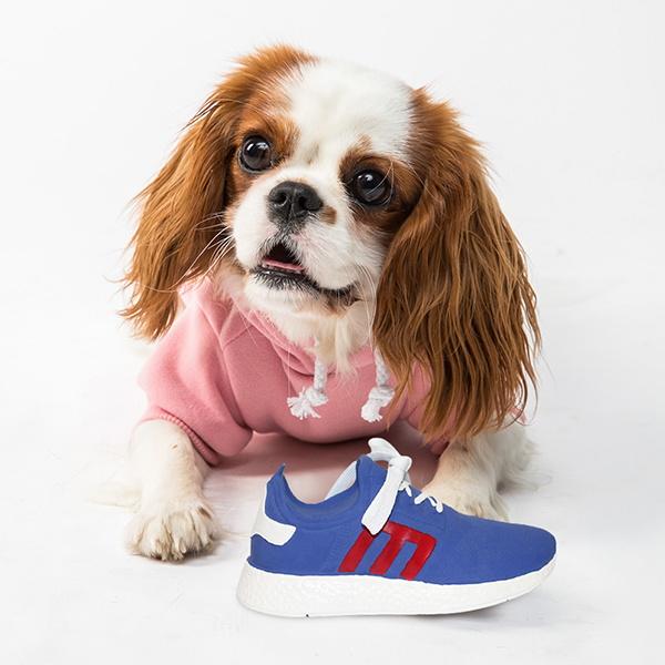 운동화 삑삑이 장난감 신발끈 신발