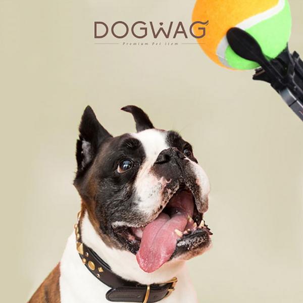 도그웨그 DOGWAG 강아지 고양이 셀카볼
