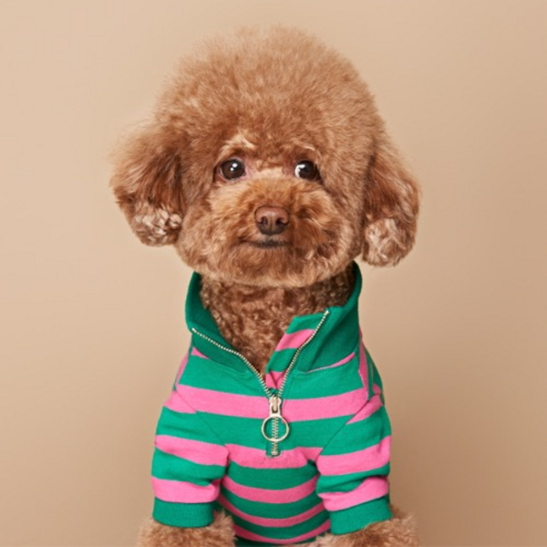 칵테일 아노락 티셔츠 그린 핑크
