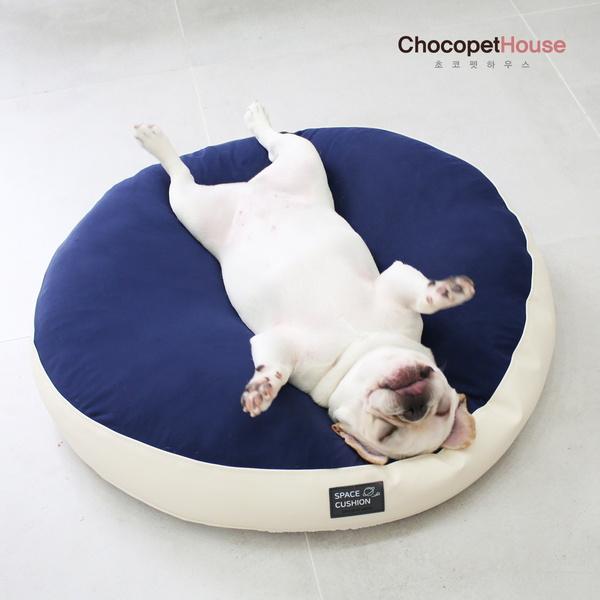 극강의편안함 강아지 무중력 우주방석 미세먼지 진드기 완벽차단 애견 쿠션 침대