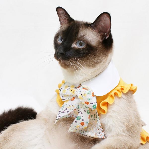 몽페레 고양이 랑데부 원피스 스위트 옐로우