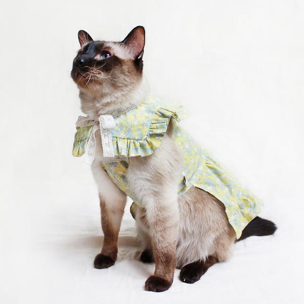 몽페레 고양이 프로방스 홀터넥 원피스 레몬그라스