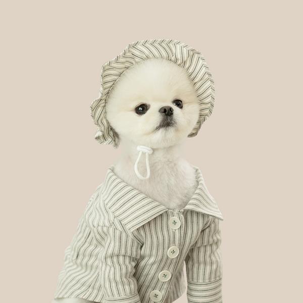 카키 스트라이프 강아지 모자