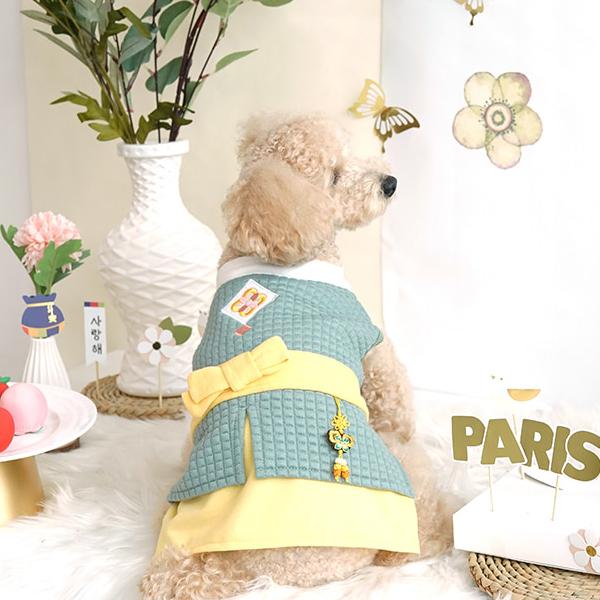 패리스독 강아지 보이즈 한복 민트