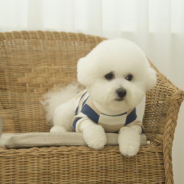 데일리 강아지 맨투맨 베이지