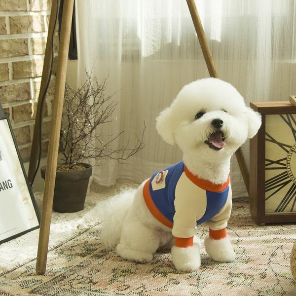 배색 크롭 강아지 맨투맨 티셔츠 블루