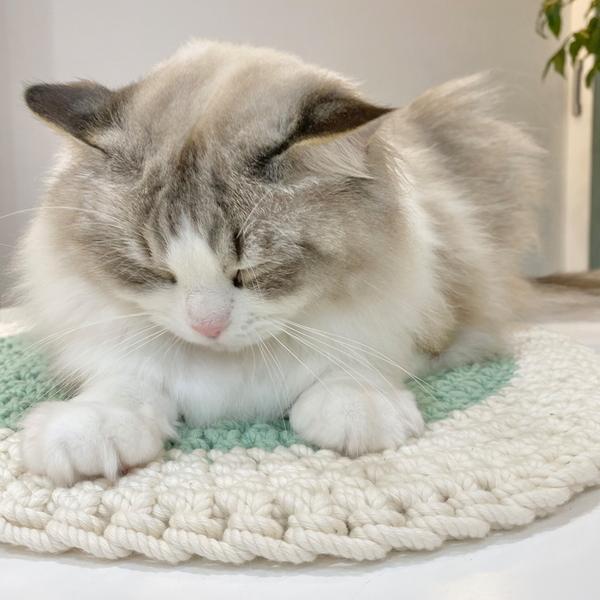 개달당 댕냥이 스크래쳐 겸 러그 고양이방석 강아지방석