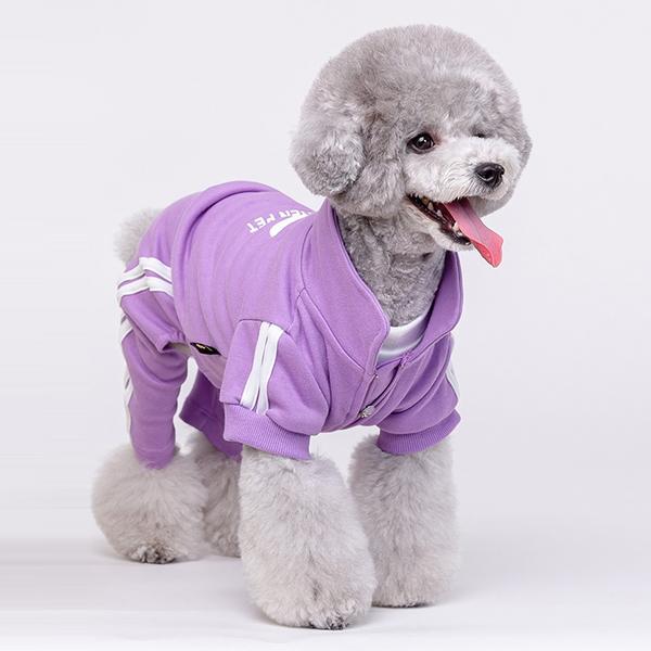 골든펫 퍼플 골든다스 강아지 옷