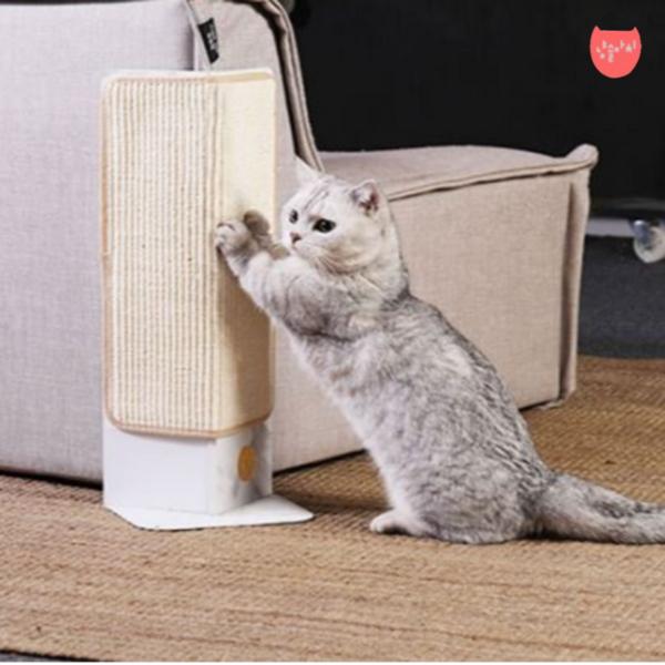고양이 코너형 벽 기둥 스크래쳐