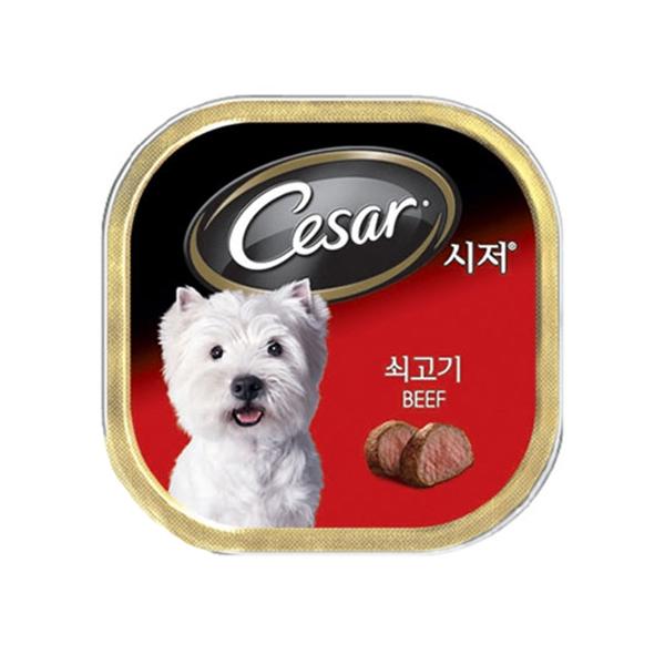 시저 강아지 캔 쇠고기 100g 10개