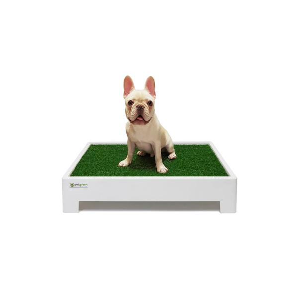 펫그린 잔디 강아지 배변박스